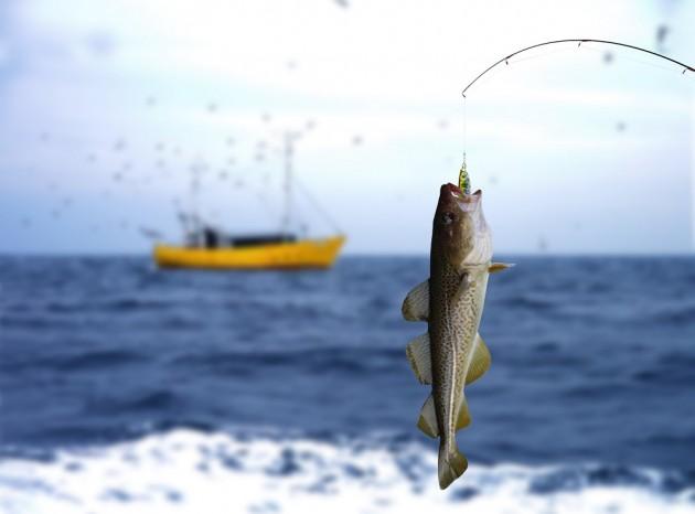 Seguros de responsabilidad Civil de pesca
